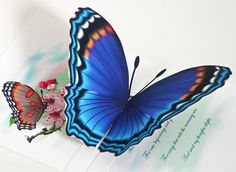 3D Pop up Blue Butterfly Card Choose Any occasion by CardNotions, $4.50