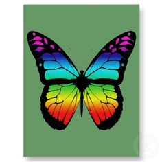 BUTTERFLY POST CARD