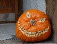20 Unique Pumpkin Ideas  →Halloween craft, carved pumpkins, pumpkin decorations, carving pumpkins, halloween pumpkins, pumpkin carvings, jack o lanterns, scary halloween, happy halloween