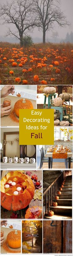 Easy Decorating Ideas for Fall