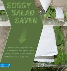 Just a square of paper towel can keep your salad fresh for up to a week longer. #SaveMoney #DIYHome #HouseholdTips #FoodStorageTip #SaladSaver #FreshLettuce #PaperTowelTrick