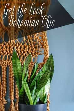 Bohemian chic is pop