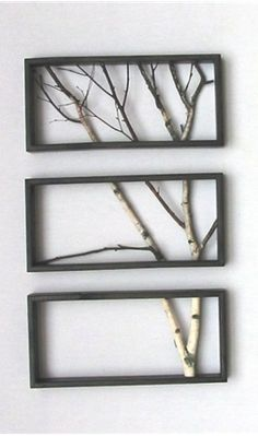 DIY - Tree Branch Art... so simple, perfect for a bathroom, or hallway