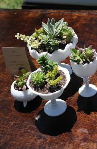 Milk Glasses are great for succulents. Great tips for home accents.