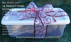 RootsAndWingsCo: Make Science Kit Gifts