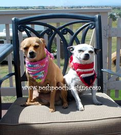 Flag Dog Bandanna -