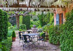 La Casella, France country photos, la casella, white wisteria