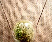 Live Moss Glass Hanging Terrarium Pendant Necklace