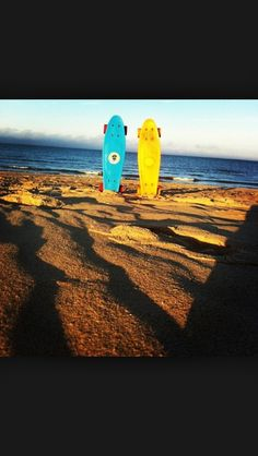Penny boards on the beach