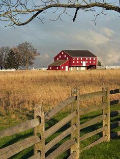 Life on a farm....