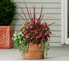 white flowers, patio, planter, pink firework, deck, garden, front porches, flower farm