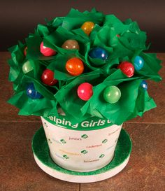 A fun craft idea with the 2013 Flower Pot Tin from Girl Scouts -- you need a styrofoam ball that sticks up out of the pot, three inch squares of green tissue paper and lollipops (wrapped or unwrapped). The image shows this will unwrapped dum-dums. Poke the sucker through the paper, insert into styrofoam until covered. Personally, I'd use wrapped Tootsie Pops!