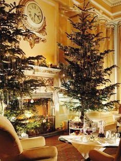 traditional christmas, christmas holidays, tradit christma, christma tree, classy christmas, eleg christma, christmas trees, the holiday