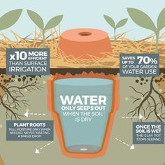 How to make your garden drought proof, using unglazed clay pots. - The Permaculture Research Institute