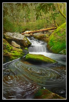 Roaring Fork River, Great Smokey Mountain National Park, Tennessee, USA  Swirling Fork Falls (by Joseph Rossbach(www.josephrossbach.com))
