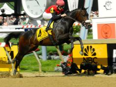 He's Achance makes a dramatic leap over an imaginary obstacle during the Sir Barton Stakes at Pimlico.