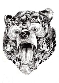 Animal illustrations  by Iain Macarthur. Bear