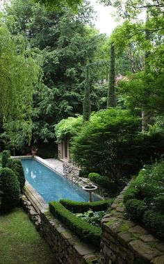 I would love to do this horizontally in the bottom level of our garden with the bamboo hedge behind it.