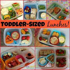 For little eaters - toddler-sized lunches packed in @EasyLunchboxes - Biting The Hand That Feeds You