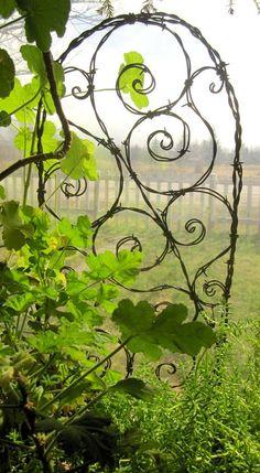 Barbed wire trellis