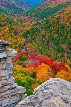 lindi point, autumn, west virginia, colors, natur, beauti, place, blackwat canyon, fall color