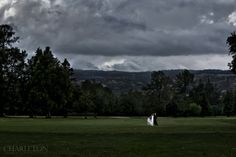 This Wine Country Wedding didn't let the weather ruin their day. Beautiful wedding photo.