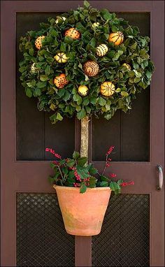 Clove studded citrus fruit topiary door decoration.