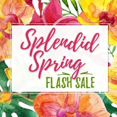 Splendid Spring with