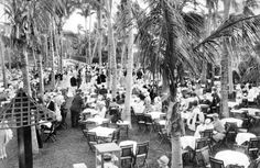 1928- The famous Coconut Grove in Palm Beach, Florida.