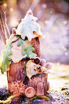 Great little fairy house.