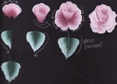 How to Paint Roses Worksheet - Decorative & Tole Painting Forum - GardenWeb