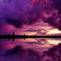 Aubergine skies...