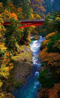 Autumn Bridge ~ Okutama, Japan