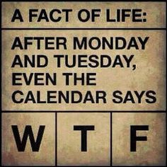 Funny picZ: Week or WTF