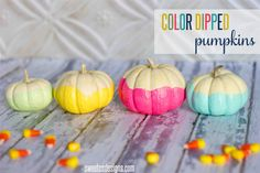 Color Dipped Pumpkins - 25 Fall DIYs for the Home