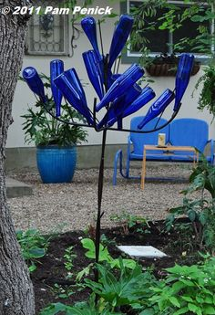 I love bottle trees...great stories behind their start and wonderful color in the garden.