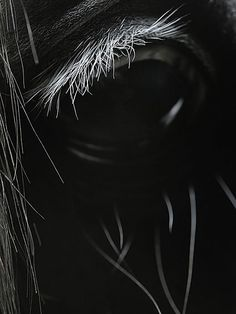 amazing eye#Repin By:Pinterest++ for iPad#
