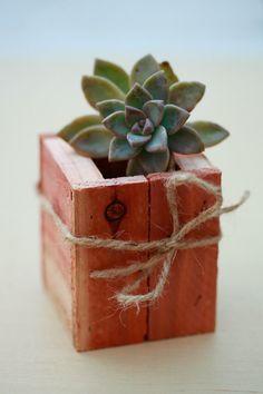 diy planter box, so cute!