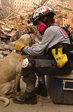 9/11 Search Dogs – Remembering Their Service