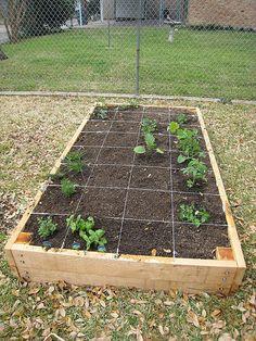 Raised bed veggie garden box