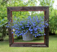 Framed Heat Loving Lobelia  - attach bucket handle to frame by drilling hole in frame, run the wire through the hole and back down and around the bottom of the frame section, back through the hole and up onto the tree branch - picture perfect!