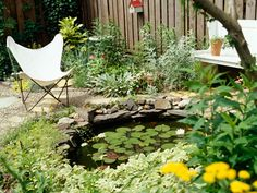 small sweet pond