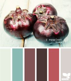 eggplant hues eggplants, living rooms, color palettes, color combo, design seeds, color schemes, bedroom colors, guest rooms, eggplant hue