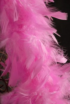 pink feather boas - we need lots of boas