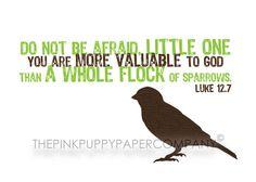 Luke 12:7