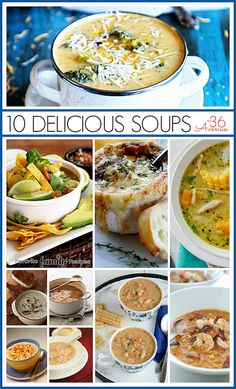 Best Soup Recipes... Oh the taste of Fall! the36thavenue.com