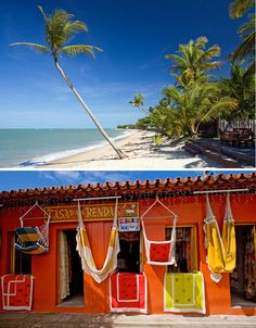 Bright tropical Bahia, Brasil. #Travel #Brasil #Beach