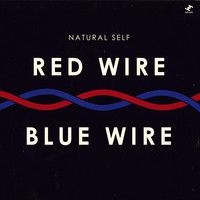Natural Self (Electronic) - Red Wire Blue Wire. Catchy, upbeat, easy listening perfect.