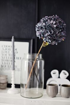 blue. gray. purple. flowers. candle. glass. water.