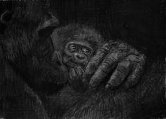 (SOLD) #45 Gorilla